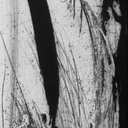 'Tiges' 2001