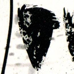 'Montagne 2' 1995