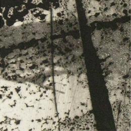 'Forêt' 2001