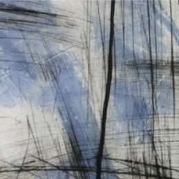 'Landscape' 2010