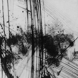 'Paysage Primordial' 2002